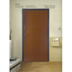 Security door, class 2, smooth H210